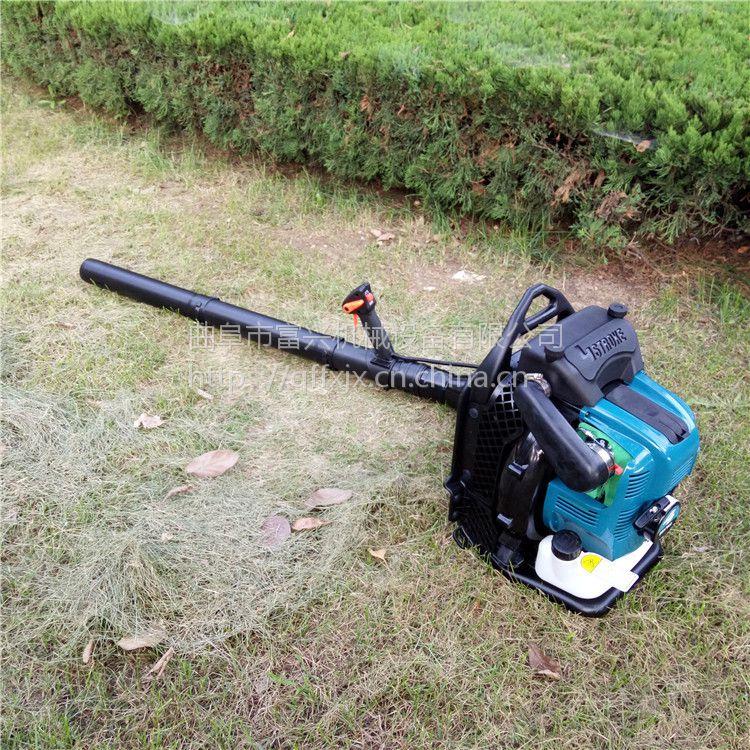 农用大棚吹雪机 富兴落叶清理吹风机 道路庭院清雪吹叶机价格