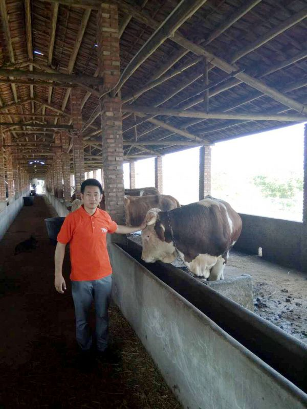 http://himg.china.cn/0/4_640_240544_600_800.jpg