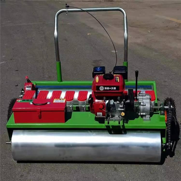 汽油自走式播种机 成都汽油多行播种机