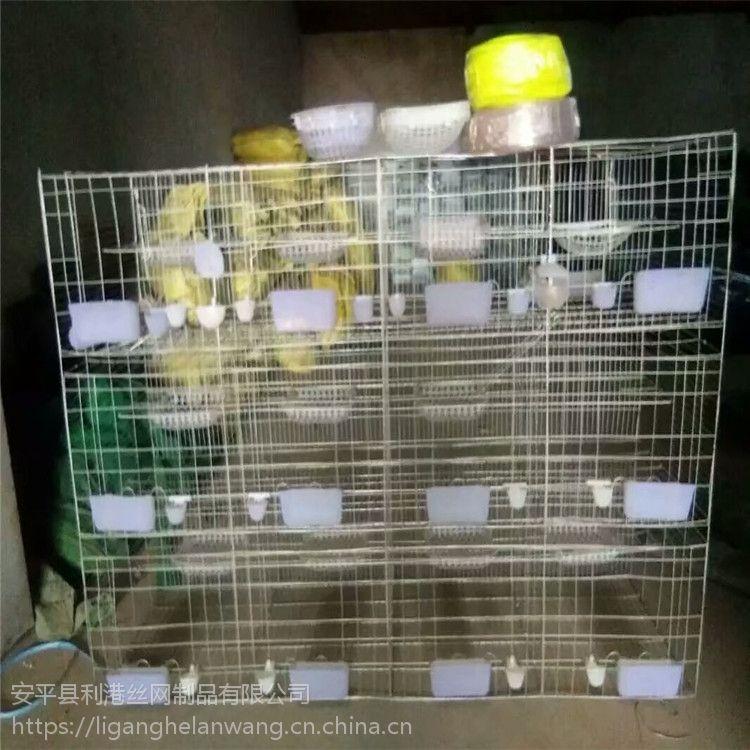 鸽子笼厂家 鸽子用品用具找河北利港丝网