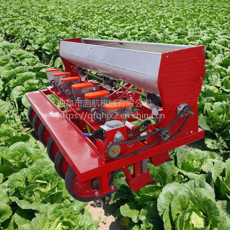 农用汽油谷子蔬菜精播机 多功能启航人力手推蔬菜播种机 单双行施肥播种机