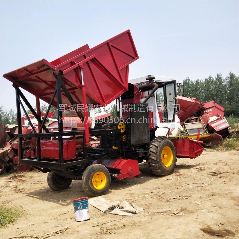 厂家出售玉米秸秆粉碎回收机 黑麦草秸秆青储机 象牙草收割机