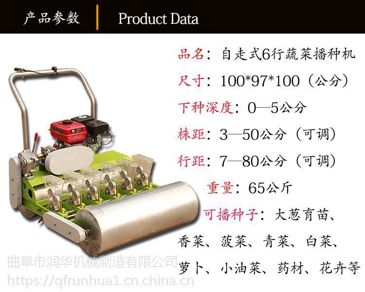 排种效果好种植机 自走式青菜播种机 油菜白菜快速播种机