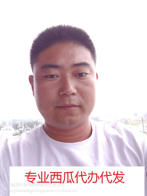 昌乐西瓜价格山东昌乐西瓜15153715701刘进