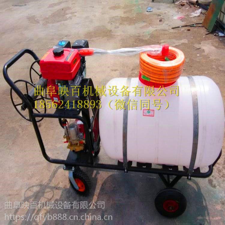 新款多功能喷雾器 江苏热销高压远射程打药机 手推式汽油打药