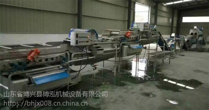 蔬菜瓜果 旋流清洗机 专业制造商