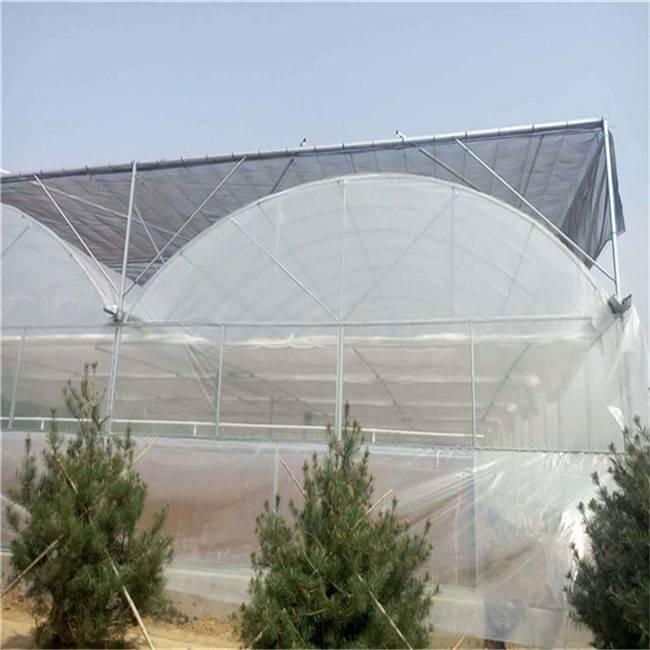 江西薄膜连栋温室,蔬菜温室大棚,薄膜温室