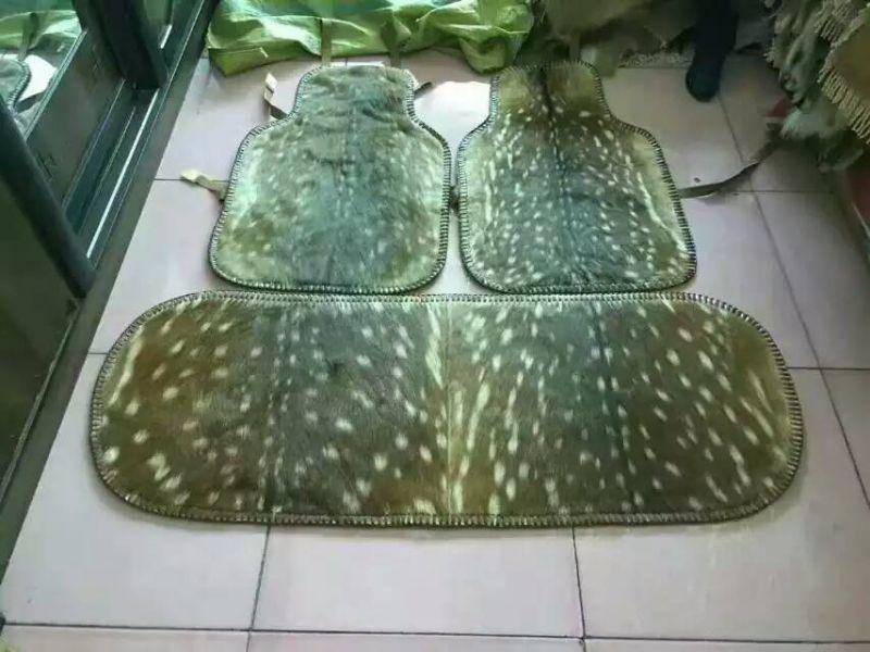 http://himg.china.cn/0/4_661_235586_800_600.jpg