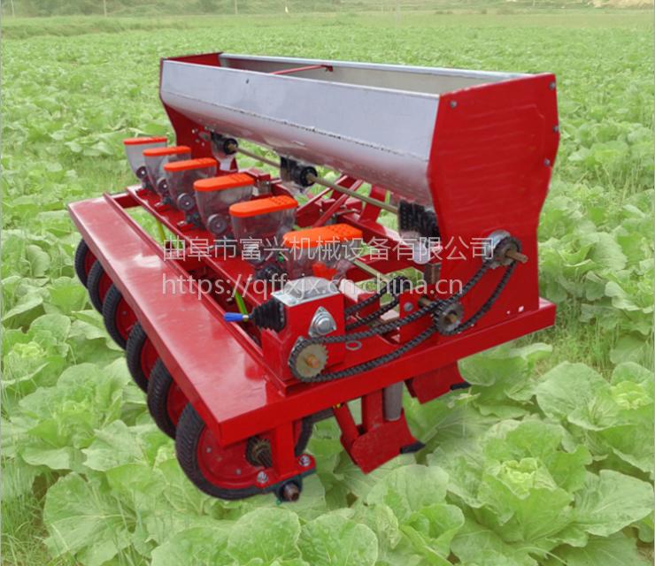 胡萝卜播种机 富兴桔梗蔬菜播种机 藜麦精播施肥机哪里有卖
