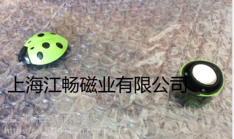七星瓢虫蝴蝶花形花朵白板磁吸 爱心心形蜗牛塑料冰箱贴磁铁 动物昆虫白板磁钉磁扣 留言板磁吸