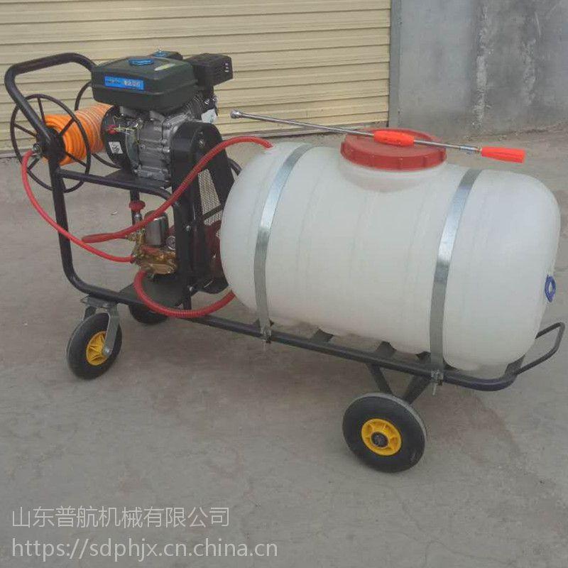 普航手推式汽油打药机 200L高压喷雾机 高杆远程果园喷药机视频