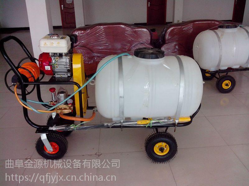 农田杀虫喷雾器防疫消毒电动打药机手推式打药车喷雾器