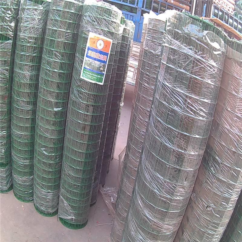 散养鸭围栏网 PVC农场围网 浸塑荷兰网