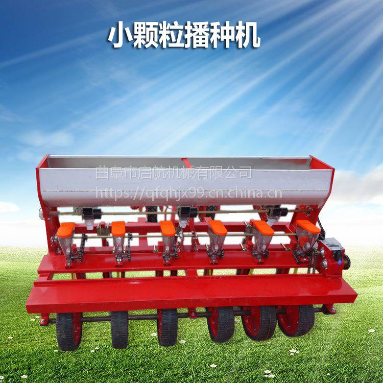 油菜播种机 苜蓿牧草小颗粒种子播种机 启航手推式蔬菜点播