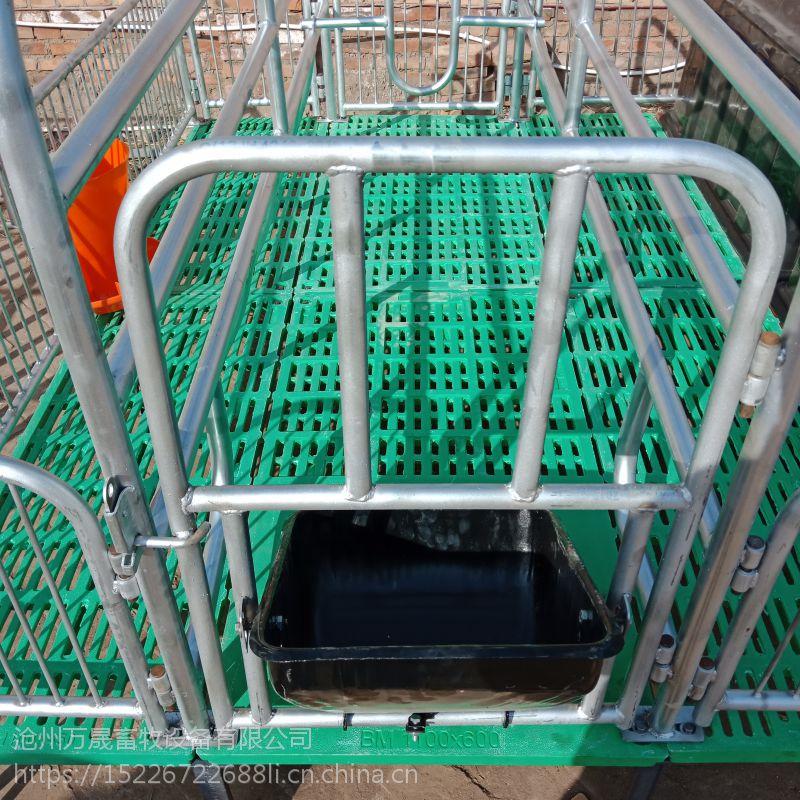 万晟畜牧设备厂定制优质双体母猪产床