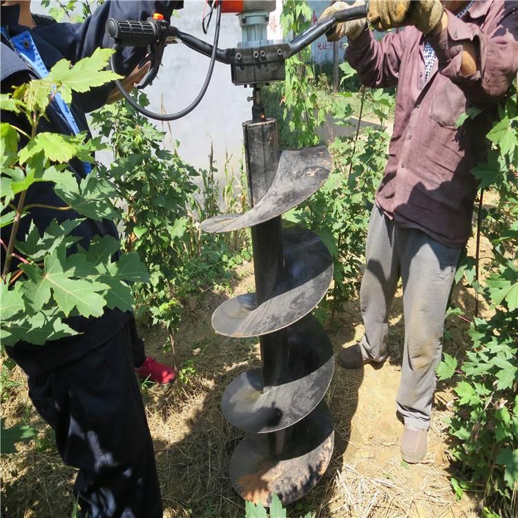 大面积园林施肥用挖坑机 新型打洞设备润众