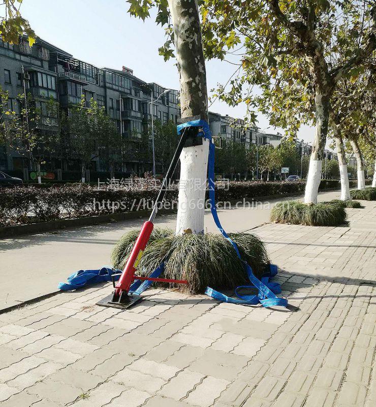 上海绿蓬新型绿化扶树器