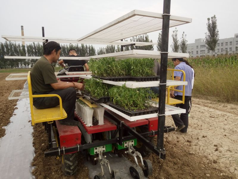 山东2ZBX-2番茄种植多功能蔬菜苗移栽机田耐尔
