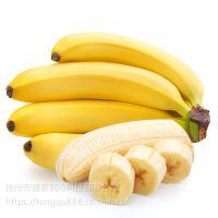 徐州哪里有建香蕉冷库?