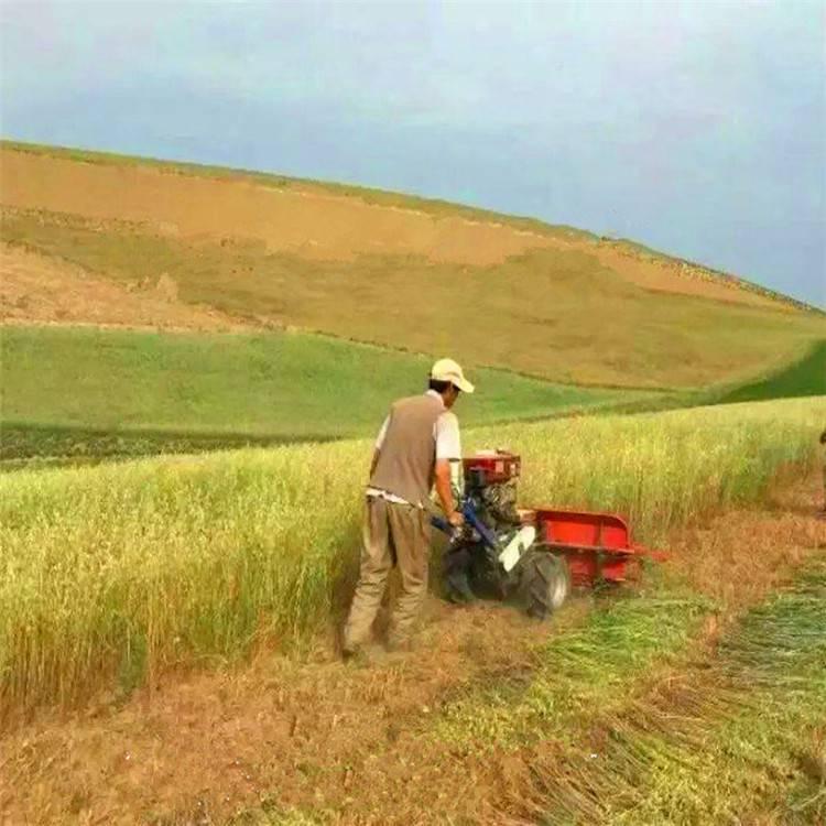 一次多行牧草收割机 单人手推割片机