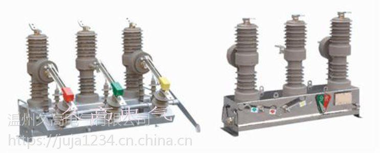 厂家直销ZW32-12F/T户外高压智能真空断路器(看门狗)