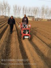 白菜萝卜播种机哪里有卖 免间苗高梁播种施肥机 大顺精播机厂家
