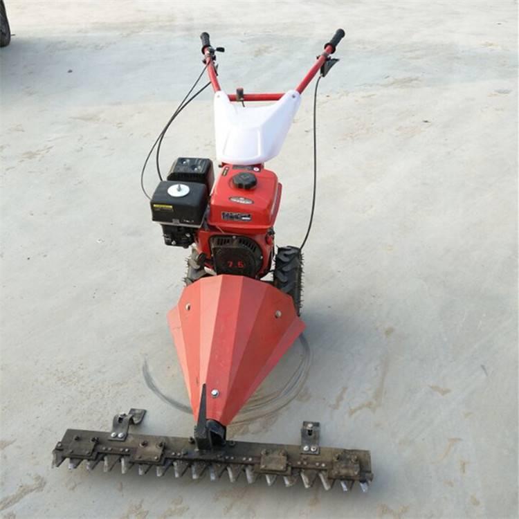 手推式汽油剪草机 剪草机图片 高效剪草机