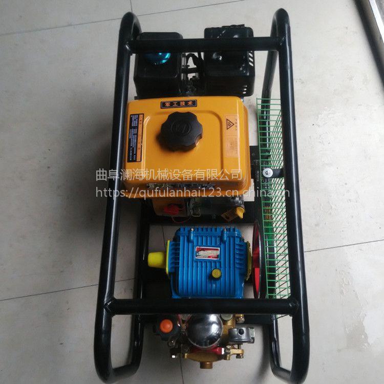 果园电动推车型喷雾器 100升推车式汽油打药车