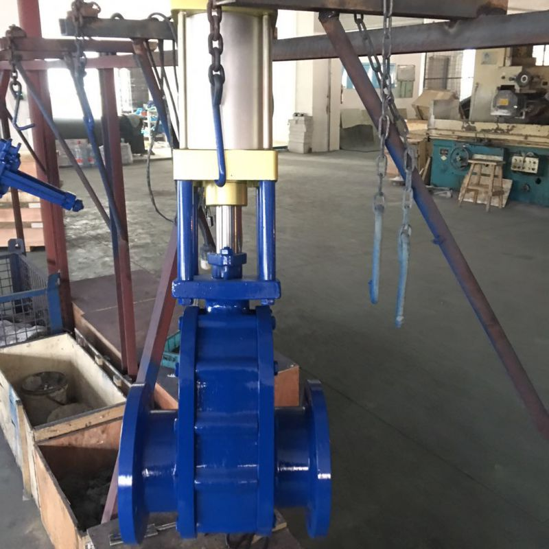 厂家直供 陶瓷气动双闸板出料阀 WZ644H-10C DN200