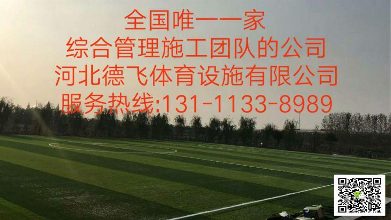 郑州全塑型橡胶跑道造价有限公司欢迎您