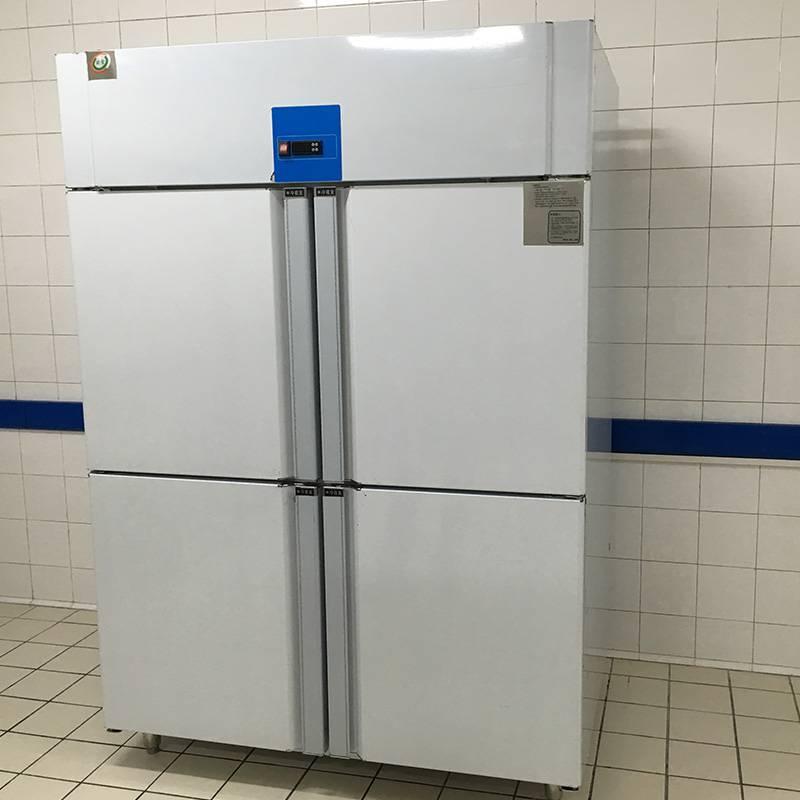 湖南豪华款立式冷冻柜多少钱一台欧雪报价
