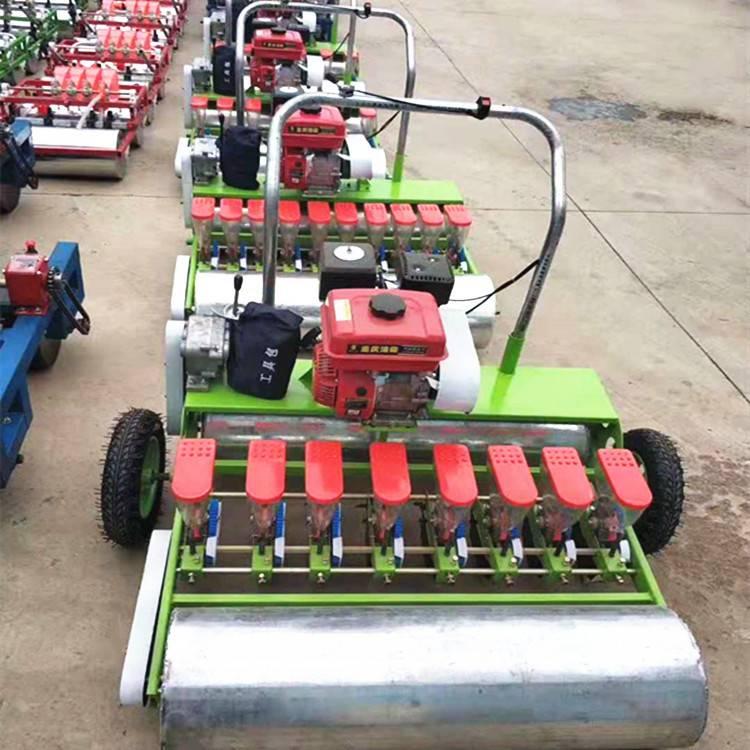 拖拉机带蔬菜播种机 株距可调香菜播种机 大棚青菜种植机
