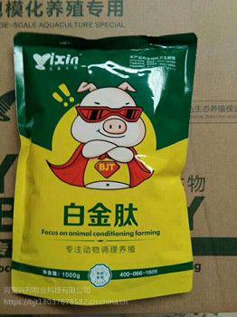 猪催肥***简单方法 猪吃什么长得快 猪催肥用什么 谊鑫白金肽
