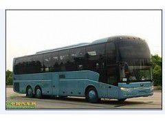 http://himg.china.cn/0/4_717_1041779_240_180.jpg
