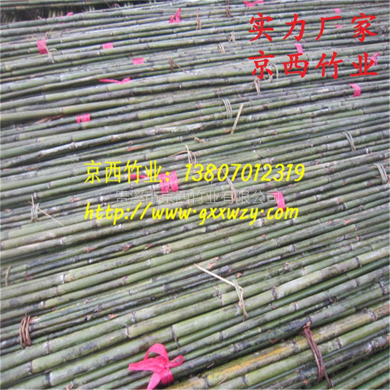 优质4米苦竹批发 绑扶树苗竹杆 江西厂家发货