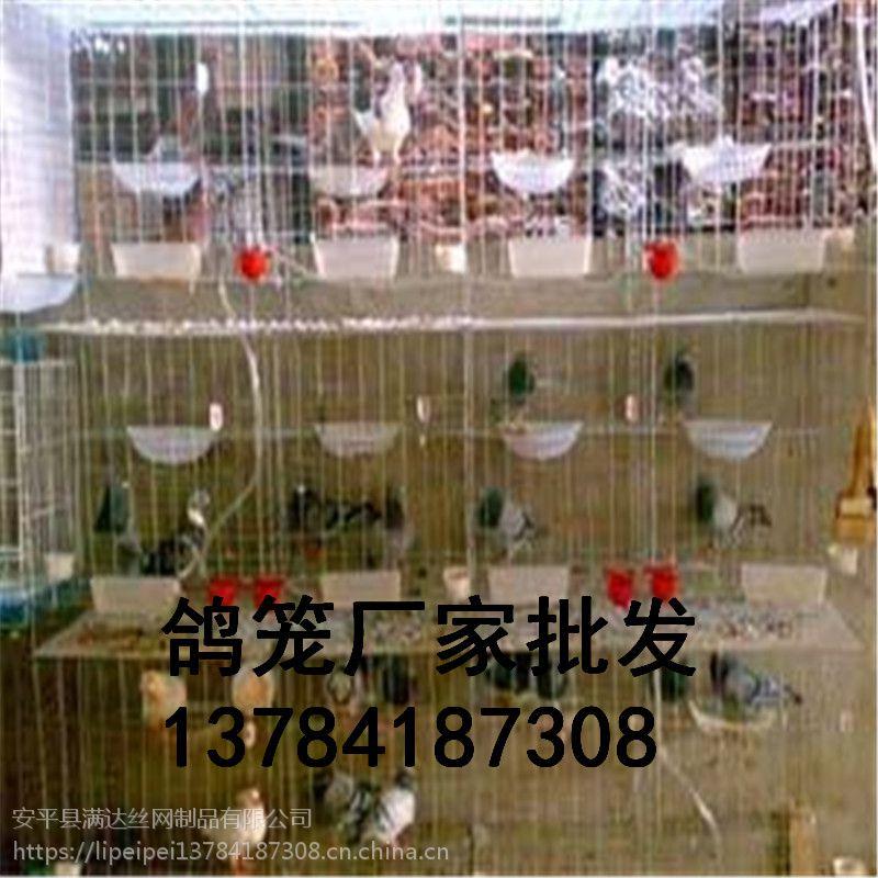 满达【铁丝鸽子笼规格尺寸】三层鸽笼 四层鸽子笼量大优惠