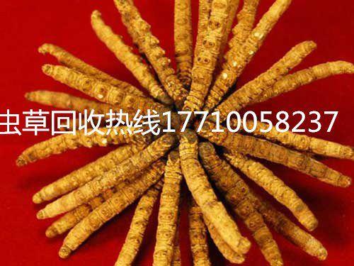 http://himg.china.cn/0/4_724_231878_500_375.jpg