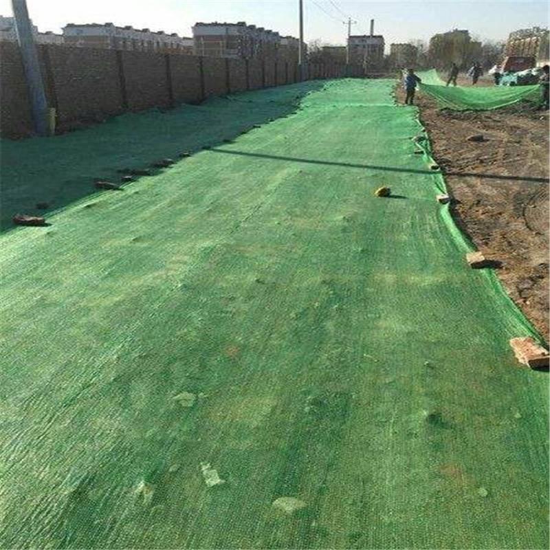 煤矿厂防尘网 建筑工地盖土网 绿色防尘网
