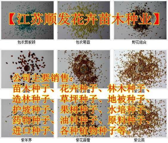 http://himg.china.cn/0/4_727_1050829_564_479.jpg