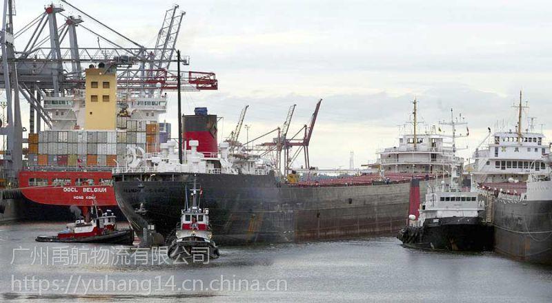 提供汕头到唐山曹妃甸门到门海运物流运输服务