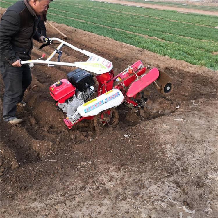 茶园翻耕碎土机 平稳运转封葱机