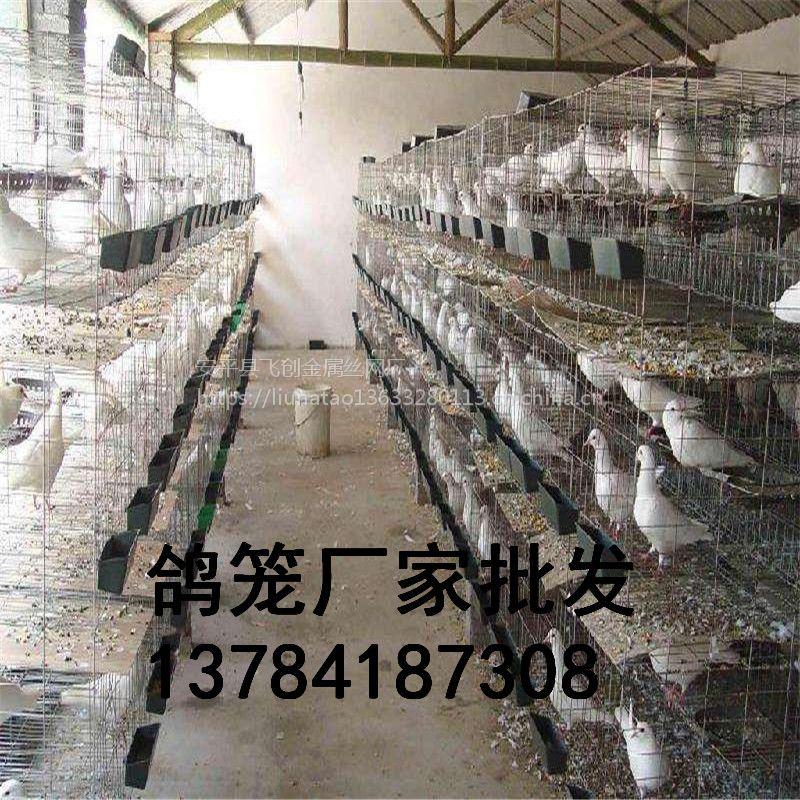 鸽子笼生产厂家【鸽子笼尺寸 规格 寿命 重量】