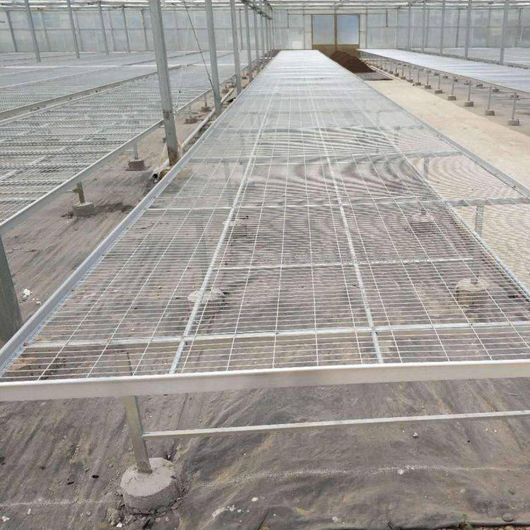 扬州热销防锈耐湿育苗网 热镀锌网片 河北安平厂家
