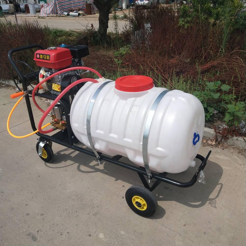 园林绿化高压喷雾机 新型汽油动力农田庄稼农药喷洒手推式打药机 乐丰牌