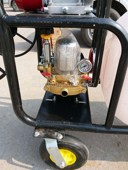 手推车式打药机 全新汽油喷雾车各种杀虫设备