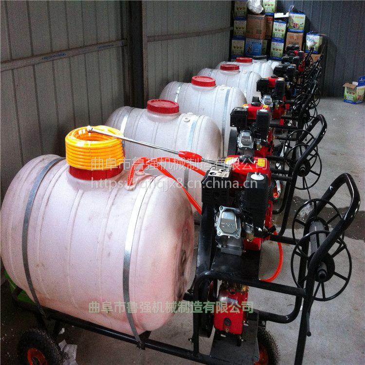 适用果树喷药机 水稻打药机 垃圾场消毒机厂家