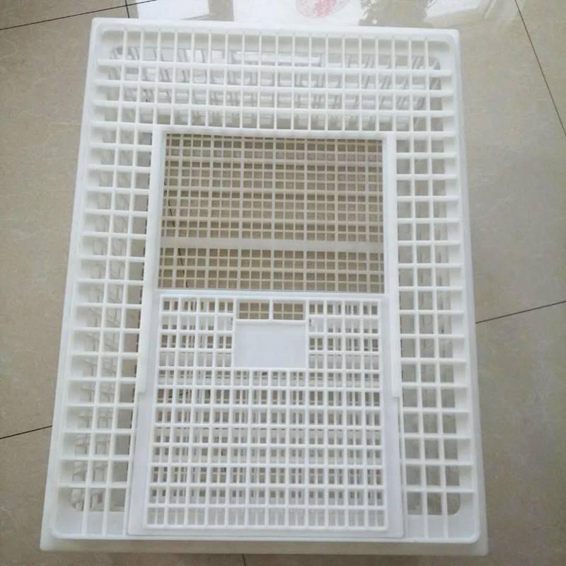 直销750*550*330mmPP原料鸭笼子 塑料装鹅笼子 鸡笼