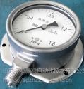 YTH-100,全不锈钢防腐压力表,北京布莱迪BLD,山东威海仪器仪表
