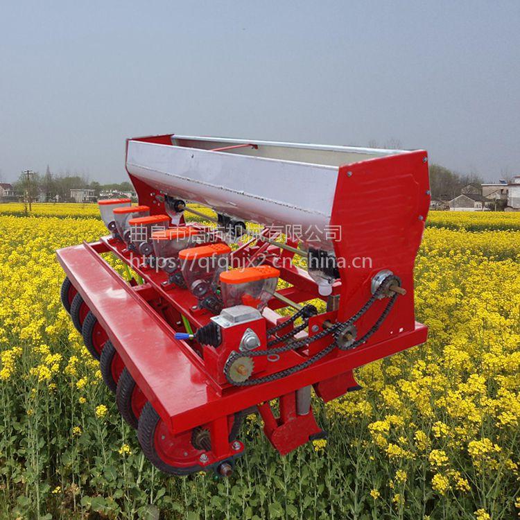 桔梗施肥精播机厂家 启航牌谷子高效播种机 多功能汽油手推式精播机