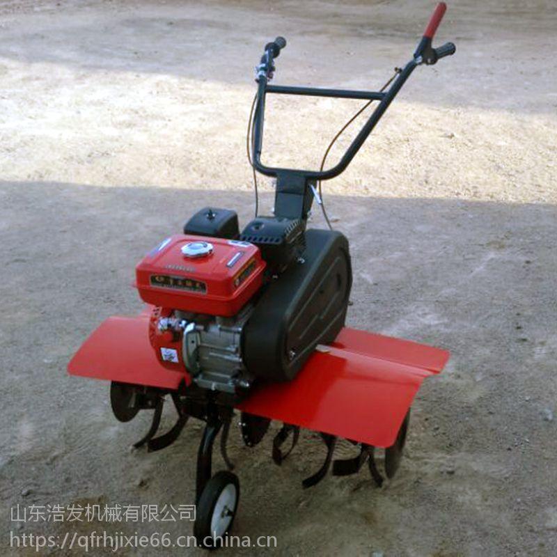 行走式汽油旋耕机 果园松土机